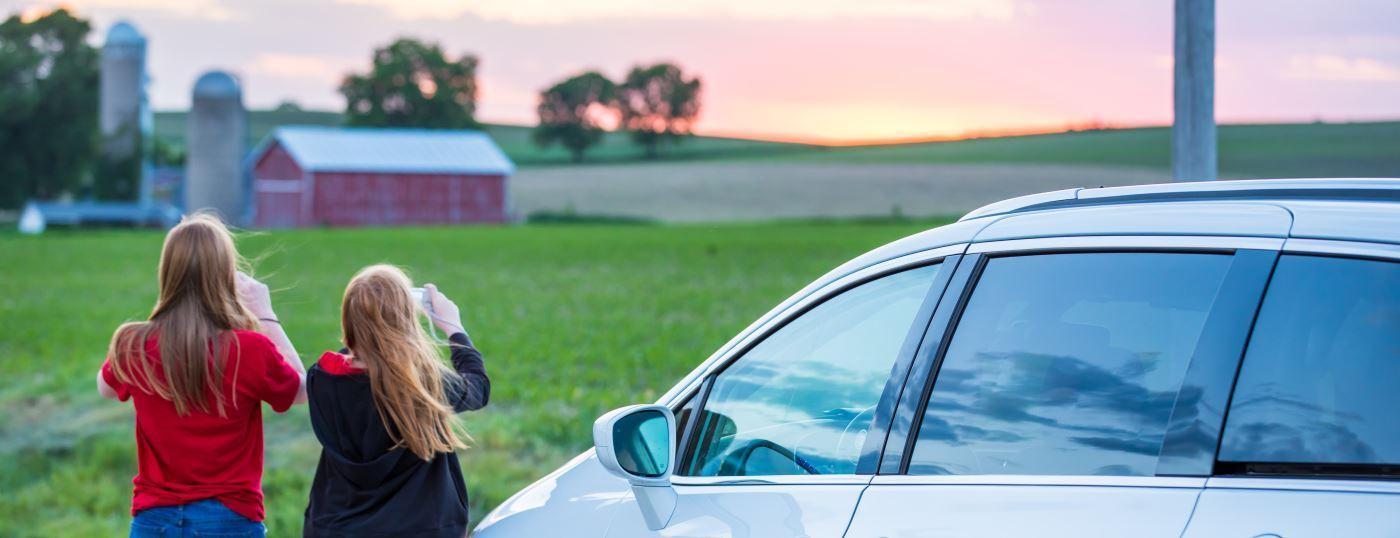 Avis and Budget car rentals