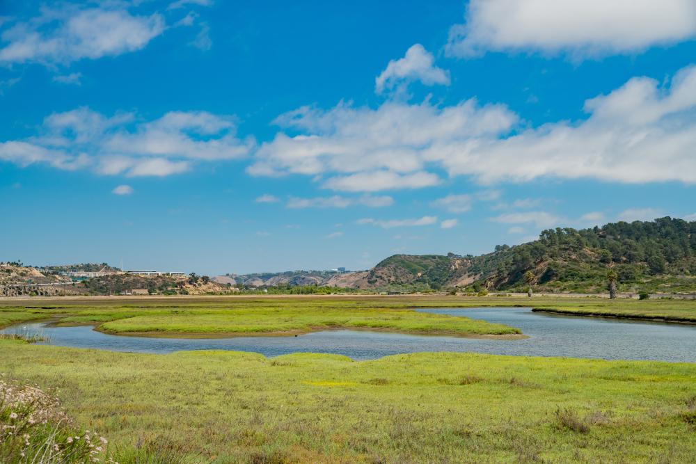 The beautiful Los Penasquitos Lagoon wetland at La Jolla, San Diego, California