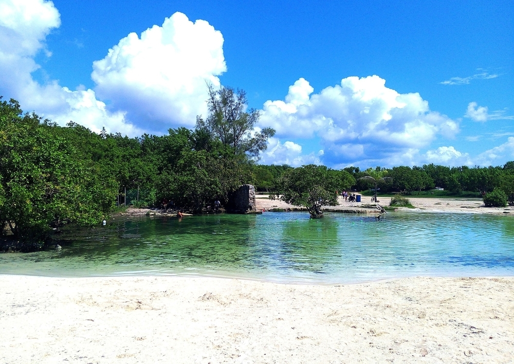 View of white sand beach and crystal clear water of cenote / oasis with lush vegetation in Punta Esmeralda, popular relaxation area near Playa Del Carmen, Riviera Maya, Mexico