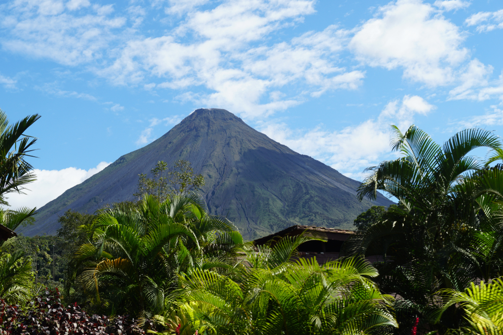 The Volcano Arenal in costa rica in front of palms and green leaves.
