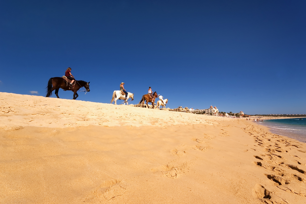 Horse riding along the beach in Los Cabos